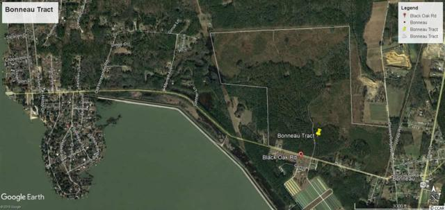 TBD Black Oak Rd., Bonneau, SC 29431 (MLS #1906445) :: The Litchfield Company