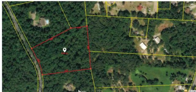 2299 Lendrim Lake Dr., Conway, SC 29526 (MLS #1906473) :: The Hoffman Group