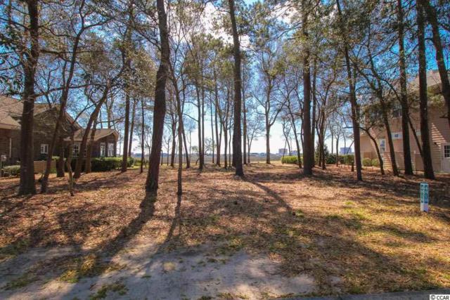 4818 Bucks Bluff Dr., North Myrtle Beach, SC 29582 (MLS #1906619) :: Right Find Homes