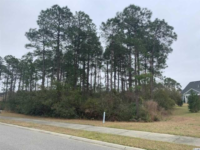 1506 Osage Dr., Myrtle Beach, SC 29579 (MLS #1906633) :: The Litchfield Company