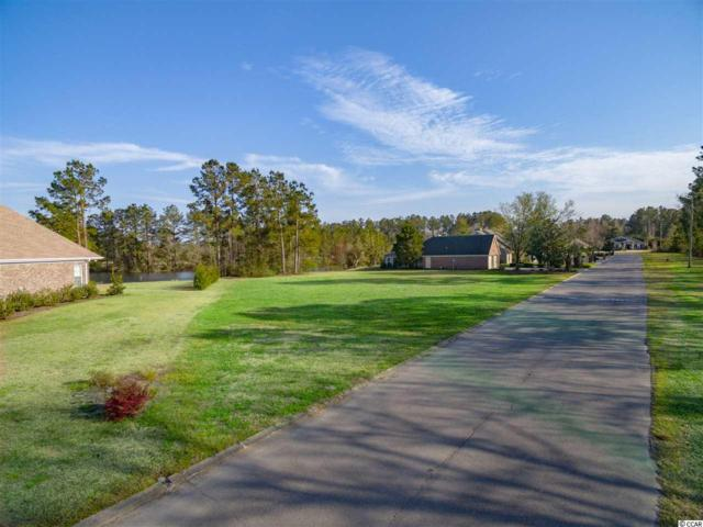 1008 Foxtail Dr., Longs, SC 29568 (MLS #1906905) :: The Hoffman Group