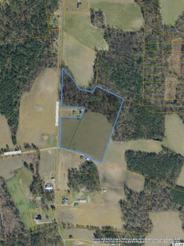 NW Mount Olive Church Rd., Nichols, SC 29581 (MLS #1907079) :: The Hoffman Group