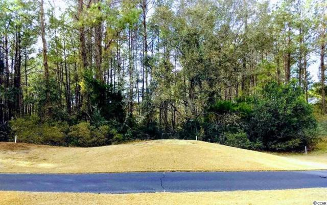 Lot 5 Collins Meadow Dr., Georgetown, SC 29440 (MLS #1907288) :: The Homes & Valor Team