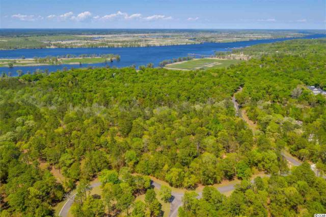46 Deer Meadow Ln., Pawleys Island, SC 29585 (MLS #1907742) :: Jerry Pinkas Real Estate Experts, Inc