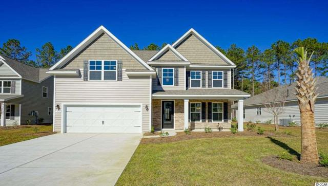 229 Star Lake Dr., Murrells Inlet, SC 29576 (MLS #1907772) :: The Greg Sisson Team with RE/MAX First Choice