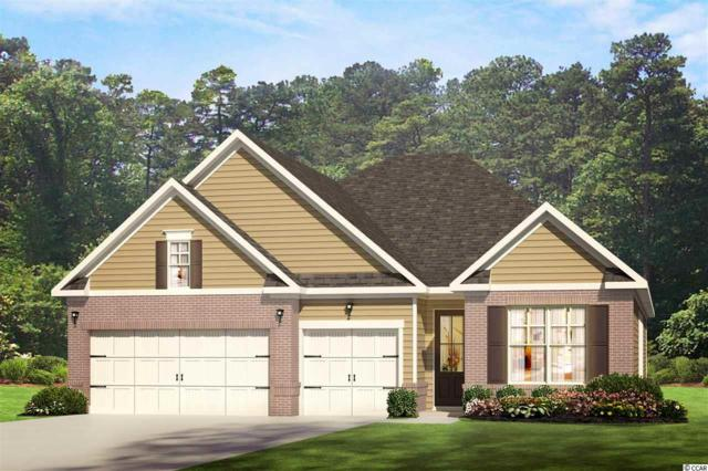 287 Star Lake Dr., Murrells Inlet, SC 29576 (MLS #1907992) :: The Litchfield Company