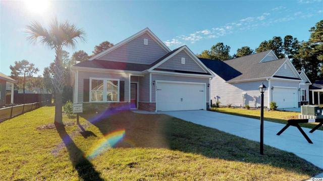 1703 Palmetto Palm Dr., Myrtle Beach, SC 29579 (MLS #1908020) :: The Hoffman Group