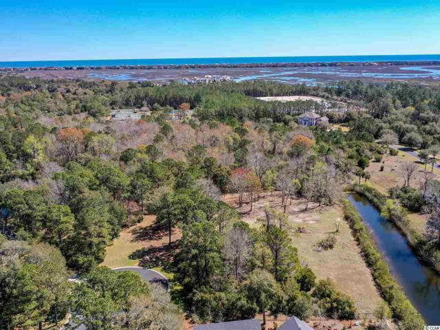 Lot 3 Josie Way, Georgetown, SC 29440 (MLS #1908105) :: The Hoffman Group