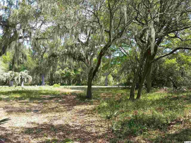 Lot 258 Bonnyneck Dr., Georgetown, SC 29440 (MLS #1908230) :: The Hoffman Group