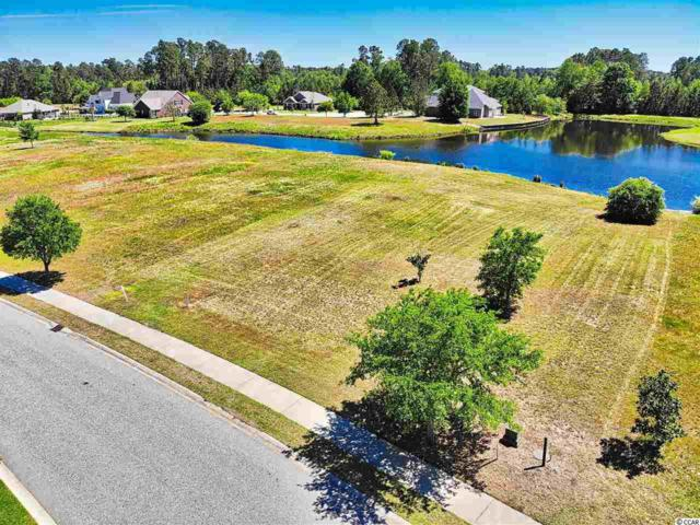 1308 Whooping Crane Dr., Conway, SC 29526 (MLS #1908754) :: Jerry Pinkas Real Estate Experts, Inc