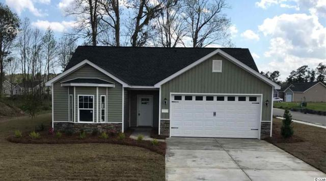 251 Maiden's Choice Dr., Conway, SC 29527 (MLS #1908776) :: The Hoffman Group