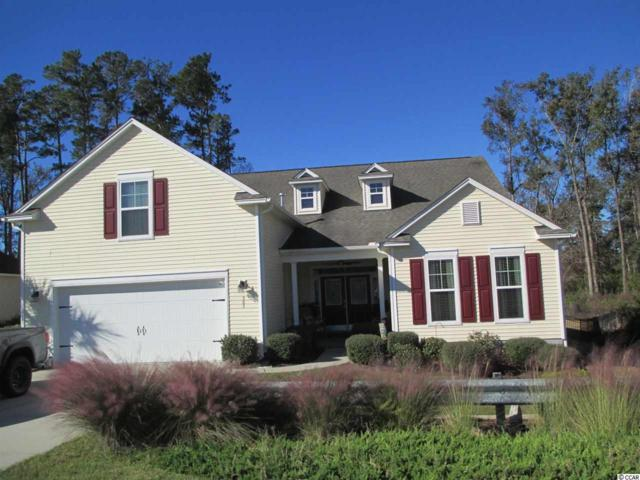 383 Trestle Way, Conway, SC 29526 (MLS #1909001) :: Right Find Homes