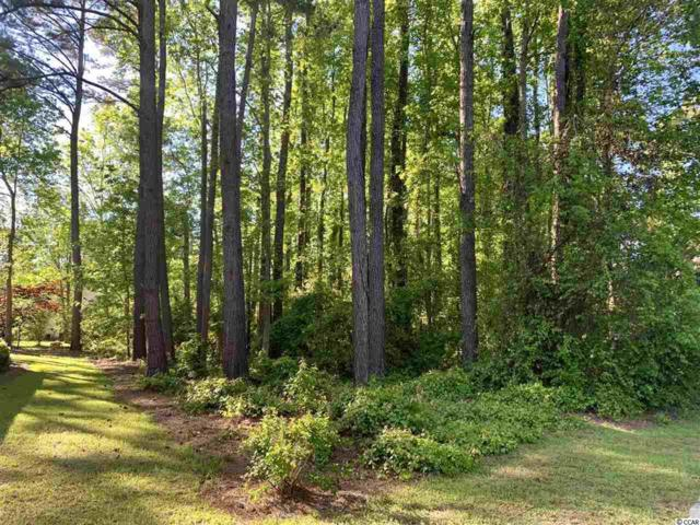 TBD Clancurry Pl., Pawleys Island, SC 29585 (MLS #1909097) :: The Litchfield Company