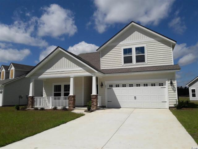 853 Brant St., Myrtle Beach, SC 29579 (MLS #1909444) :: Jerry Pinkas Real Estate Experts, Inc