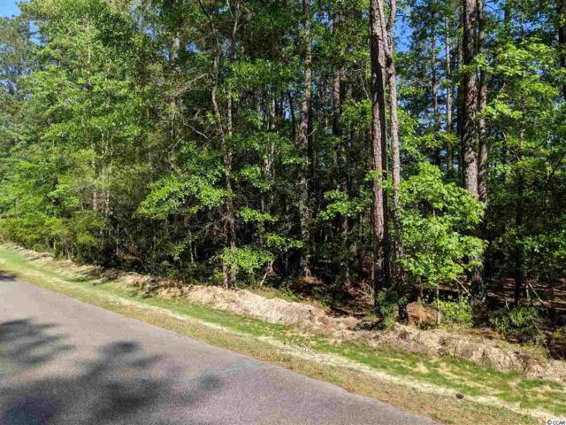 1160 Francis Parker Rd., Georgetown, SC 29440 (MLS #1909453) :: The Greg Sisson Team with RE/MAX First Choice