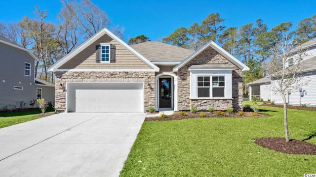 237 Star Lake Dr., Murrells Inlet, SC 29576 (MLS #1909567) :: The Litchfield Company