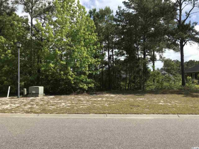 738 Chisholm Rd., Myrtle Beach, SC 29579 (MLS #1909818) :: Welcome Home Realty
