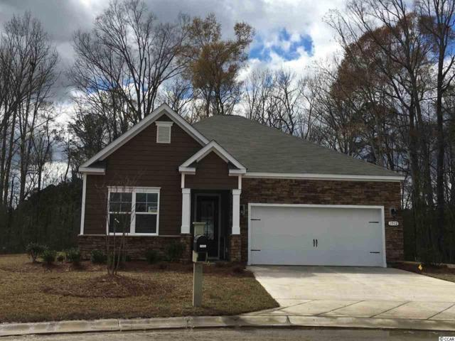 304 Cypress Springs Way, Little River, SC 29566 (MLS #1909865) :: The Hoffman Group
