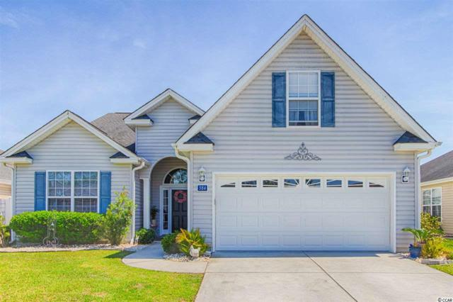 384 Sea Turtle Dr., Myrtle Beach, SC 29588 (MLS #1909926) :: The Litchfield Company