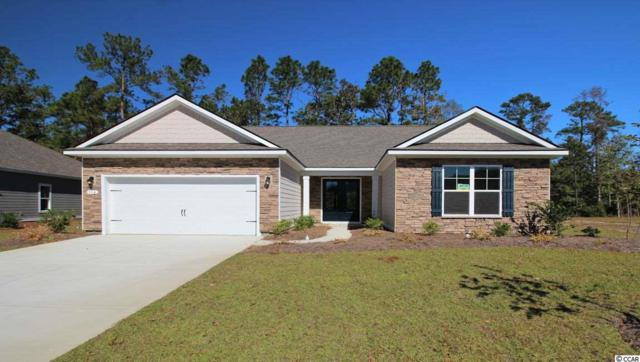 282 Star Lake Dr., Murrells Inlet, SC 29576 (MLS #1909952) :: The Litchfield Company