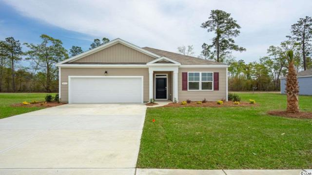 340 Carmello Circle, Conway, SC 29526 (MLS #1910071) :: Right Find Homes