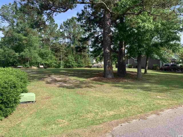 28 William Screven Rd., Georgetown, SC 29440 (MLS #1910143) :: Jerry Pinkas Real Estate Experts, Inc