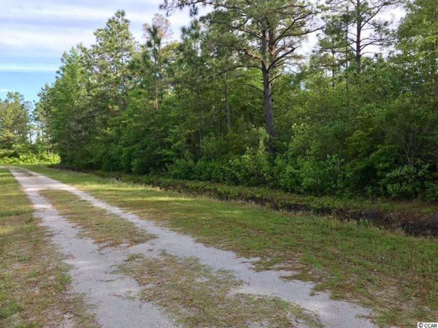 TBD Eagle Dr., Loris, SC 29569 (MLS #1910238) :: The Hoffman Group