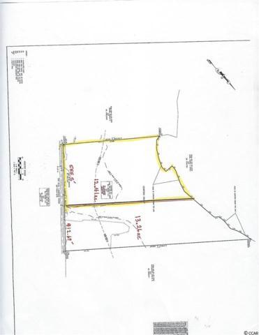 TBD Big Bull Landing Rd., Conway, SC 29526 (MLS #1910434) :: The Hoffman Group
