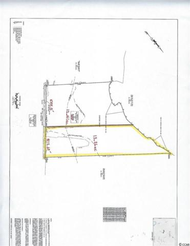 TBD Big Bull Landing Rd., Conway, SC 29526 (MLS #1910467) :: The Hoffman Group