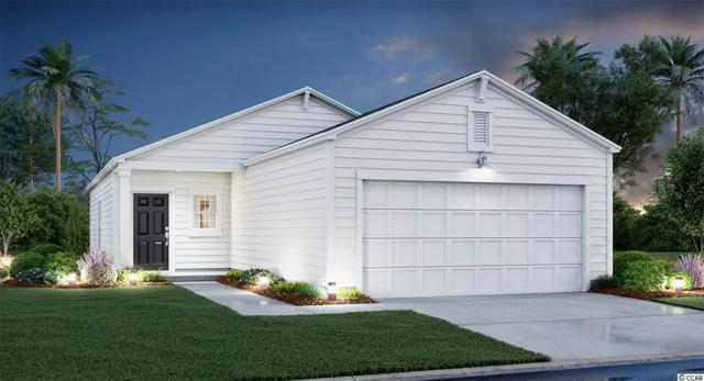 2080 Borgata Loop, Longs, SC 29568 (MLS #1910520) :: Jerry Pinkas Real Estate Experts, Inc