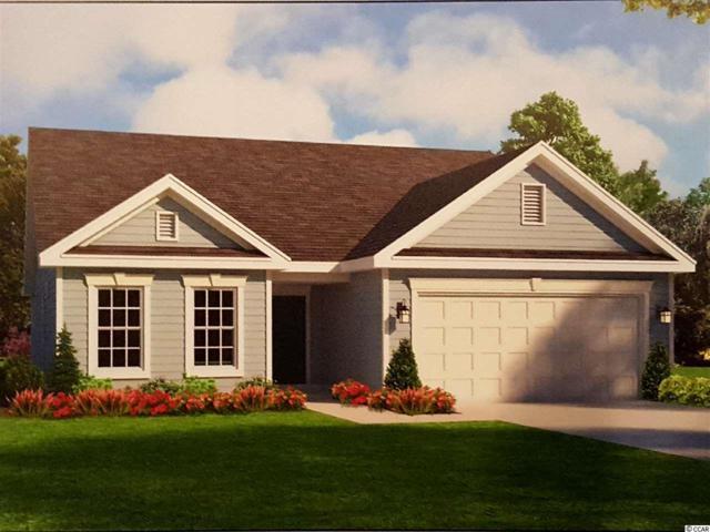 1116 Glenlevit Ln., Conway, SC 29526 (MLS #1910565) :: Jerry Pinkas Real Estate Experts, Inc