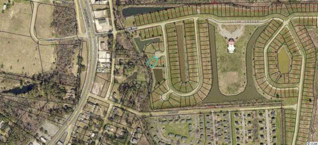 TBD Albamarle Ct., Georgetown, SC 29440 (MLS #1910699) :: United Real Estate Myrtle Beach
