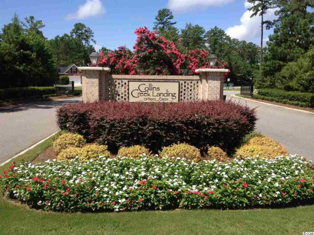 Lot 177 Woody Point Dr., Murrells Inlet, SC 29576 (MLS #1911047) :: The Lachicotte Company