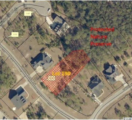Lot 190 Woody Point Dr., Murrells Inlet, SC 29576 (MLS #1911058) :: The Litchfield Company