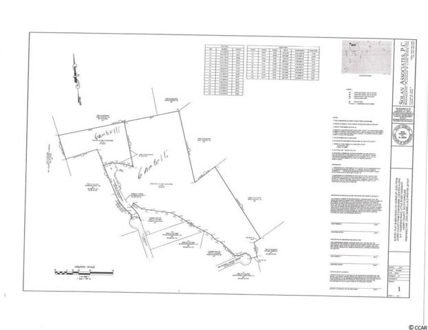 Ap Thompson Rd., Longs, SC 29568 (MLS #1911271) :: Keller Williams Realty Myrtle Beach
