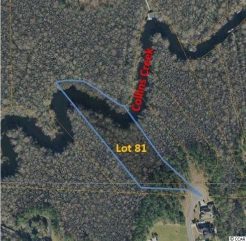 Lot 81 Woody Point Dr., Murrells Inlet, SC 29576 (MLS #1911389) :: SC Beach Real Estate