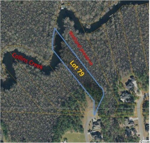 Lot 79 Woody Point Dr., Murrells Inlet, SC 29576 (MLS #1911390) :: SC Beach Real Estate