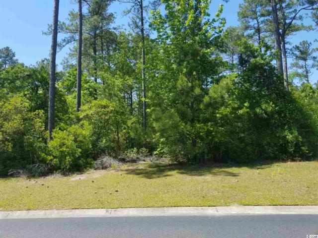 106 Creek Harbour Circle, Murrells Inlet, SC 29576 (MLS #1911521) :: The Litchfield Company