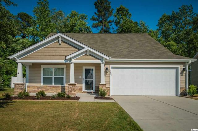 261 Sea Turtle Dr., Myrtle Beach, SC 29588 (MLS #1911685) :: The Litchfield Company