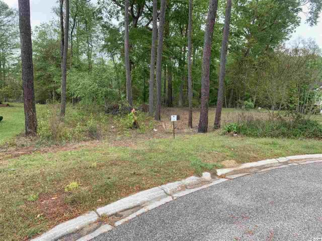 210 Rivers Edge Dr., Conway, SC 29526 (MLS #1911974) :: SC Beach Real Estate