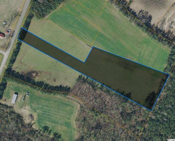 TBD Bud Graham Rd., Aynor, SC 29511 (MLS #1912568) :: The Hoffman Group