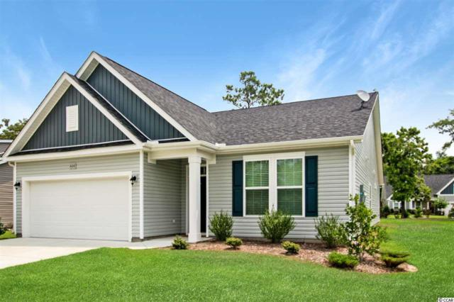 404 Shaft Pl., Conway, SC 29526 (MLS #1912578) :: The Hoffman Group