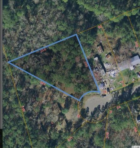 Lot 31 Coastal Oaks Dr., Conway, SC 29527 (MLS #1913145) :: United Real Estate Myrtle Beach