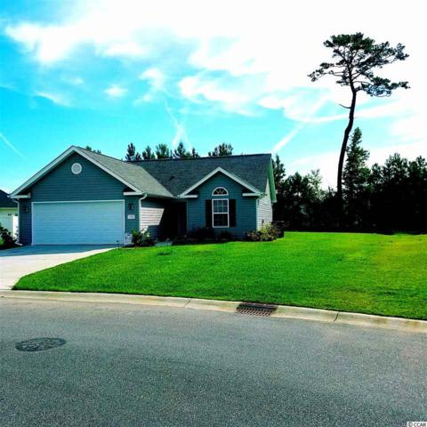 133 Woodland Park Loop, Murrells Inlet, SC 29576 (MLS #1913180) :: United Real Estate Myrtle Beach