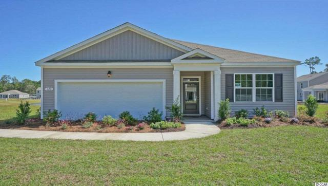 1724 Promise Pl., Myrtle Beach, SC 29588 (MLS #1913207) :: Jerry Pinkas Real Estate Experts, Inc