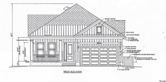 533 Crystal Water Way, Myrtle Beach, SC 29579 (MLS #1913306) :: The Trembley Group