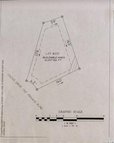 656 Cocas Dr., Myrtle Beach, SC 29579 (MLS #1913356) :: The Hoffman Group