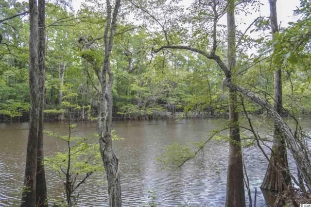 TBD Hidden River Rd., Loris, SC 29569 (MLS #1913409) :: Sloan Realty Group
