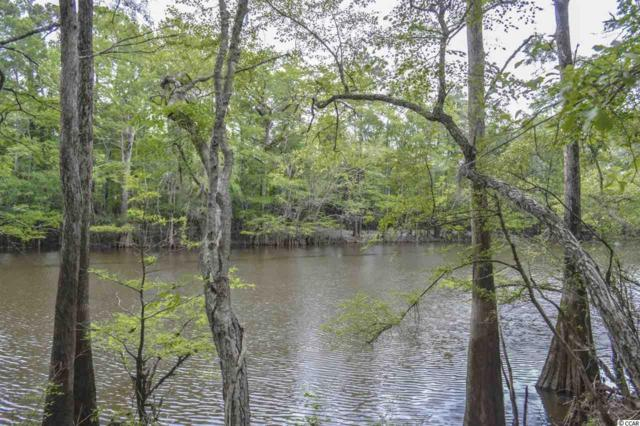 TBD Hidden River Rd., Loris, SC 29569 (MLS #1913411) :: Sloan Realty Group