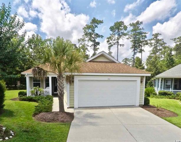 341 Declyn Ct., Murrells Inlet, SC 29576 (MLS #1913658) :: Jerry Pinkas Real Estate Experts, Inc